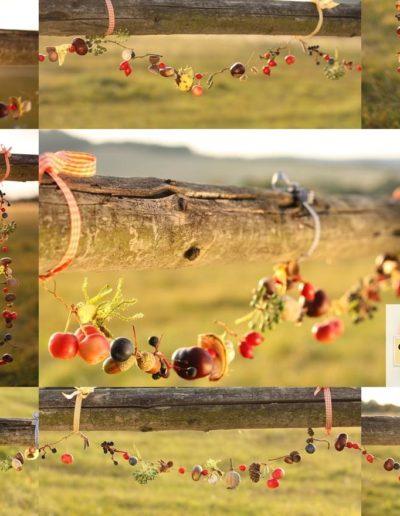 Podzim na drátku